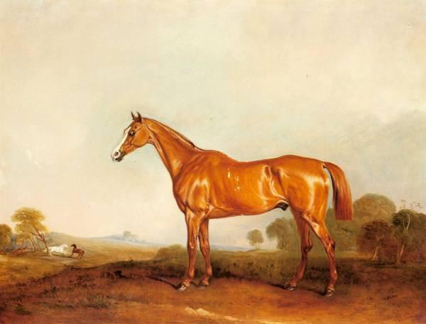 Ferneley Jr John A Golden Chestnut Hunter In A Landscape